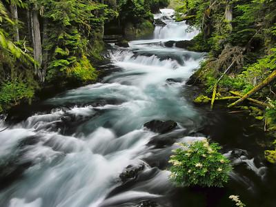 Trail of Falls