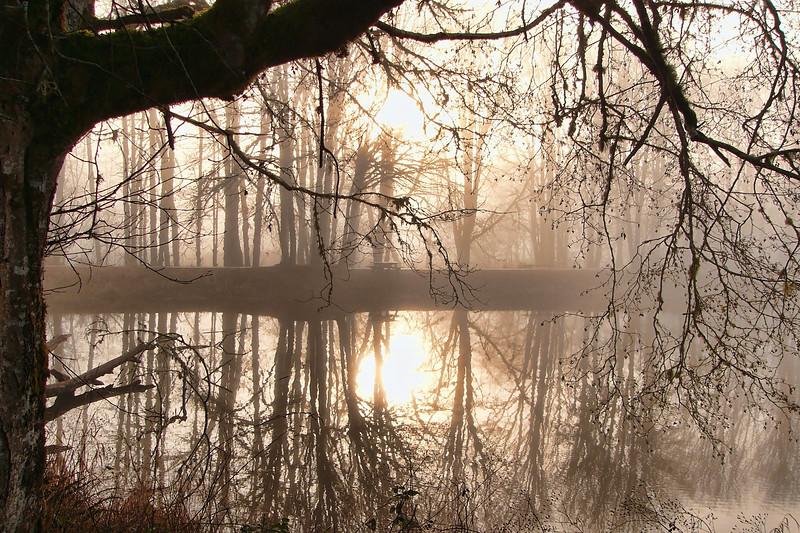Lakeside Early