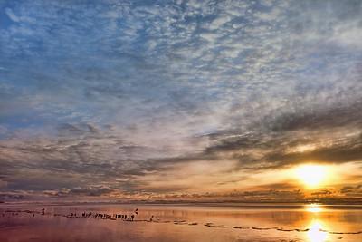 The Cotton Coast