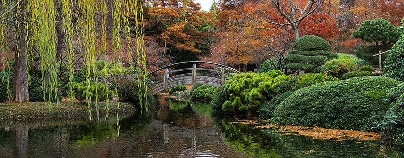 Tranquil Bridge Fall
