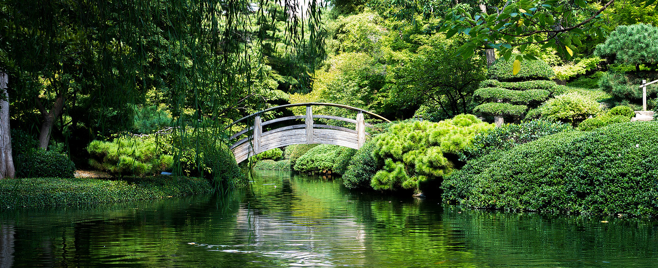 Tranquil Bridge
