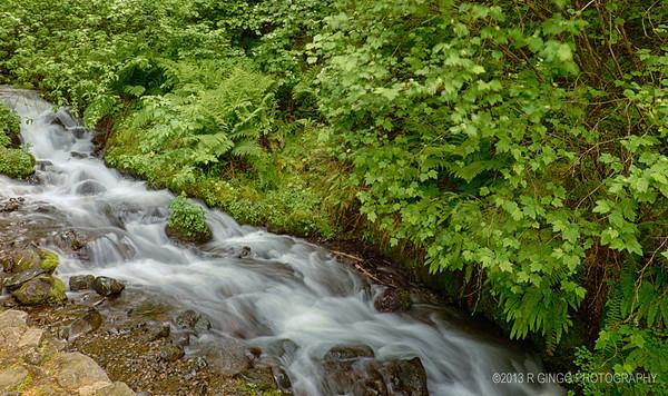 Oregon Stream By Wahkeena Falls