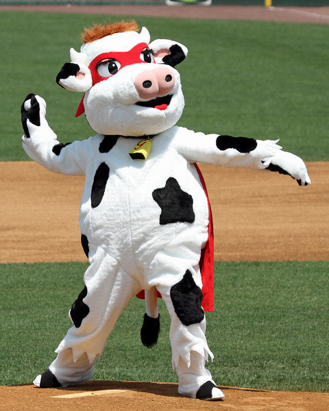 Let's see... long drive, hot July day... cow on the mound... maybe I'm dehydrated. (Side note--right now my hair is about the same color as Supercow's.)