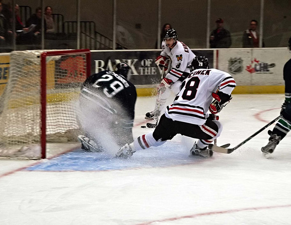 Portland Winterhawks Hockey * click to view gallery