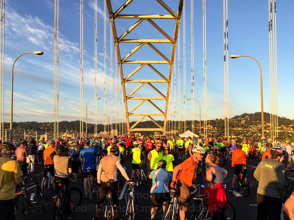 Mass of riders waiting for the full length of 405 to open. Next stop: Marquam! Photo by Jeremy Kitchen.