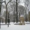 Snowfall & Trees 07