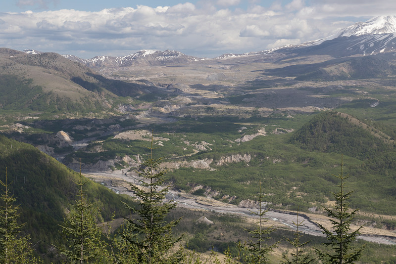 Toutle River Valley