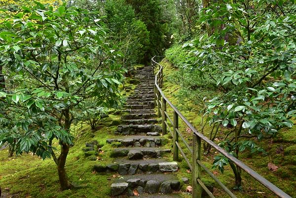 Japanese Garden Stairs