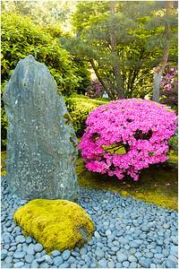 Portland Japanese 'Flat' Garden