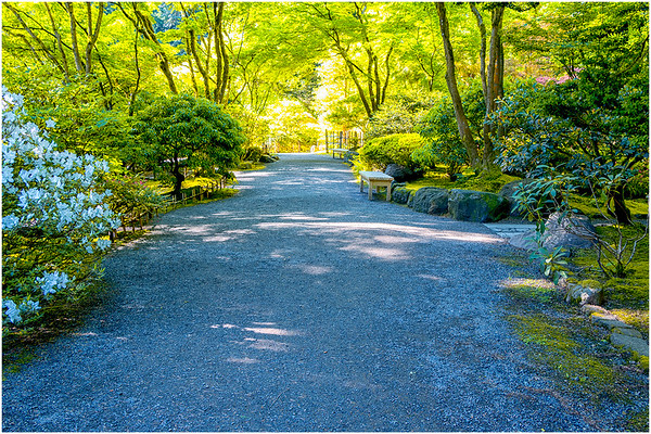 Colors, Portland Japanese Garden