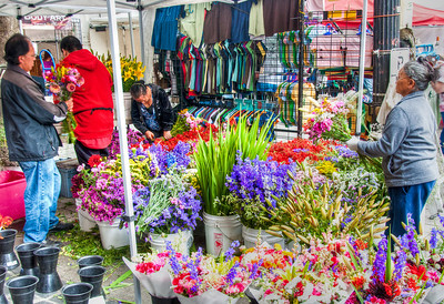portland-saturday-market-flowers