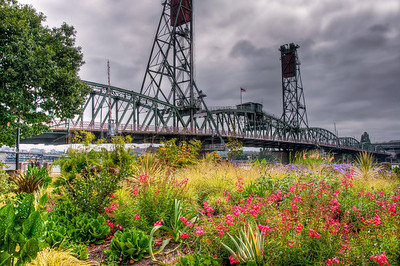 portland-flowers-bridge-sky
