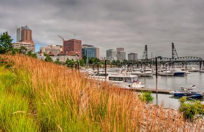 grasses-boats-city