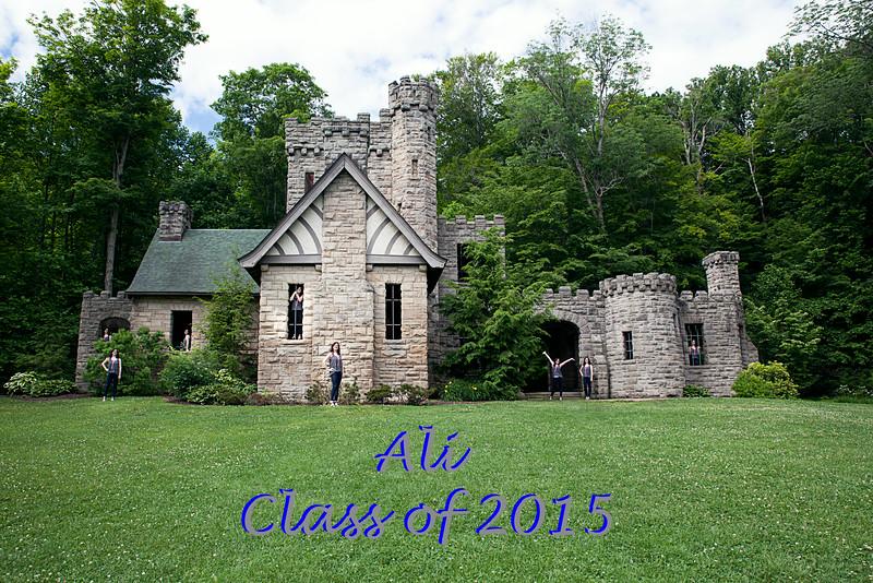 A_lot_of_ali 2015