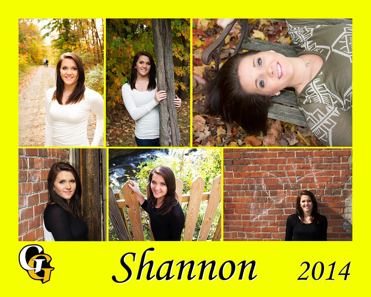 shannon collage yellow