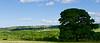 Prechádzky okolo Upleatham a Errington Wood
