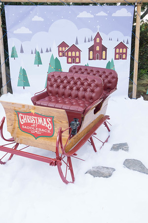 Photo Station 1 (Sleigh)