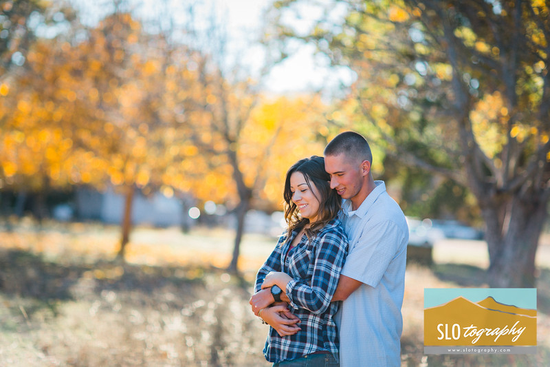 Fall Engagement at Halter Ranch