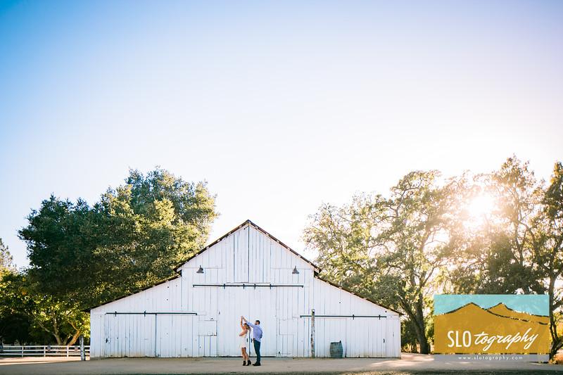 Fall Engagement at Halter Ranch