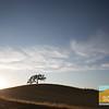 Vineyard Drive_004