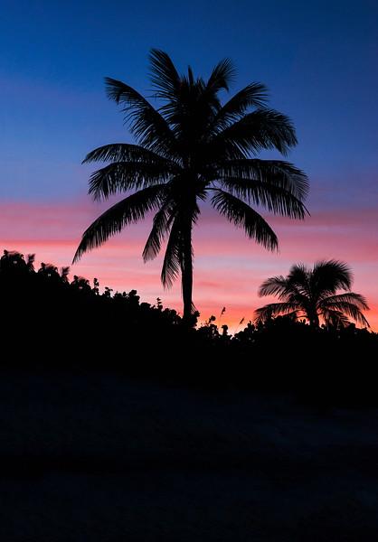 DSC01583 David Scarola Photography, Palm Beach Sunset