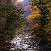DSC03327 David Scarola Photography, Great Smoky Mountains, Nov 2016