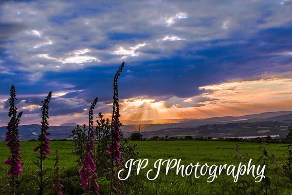 Moylehill Sunset