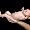 Baby-Trickett-010