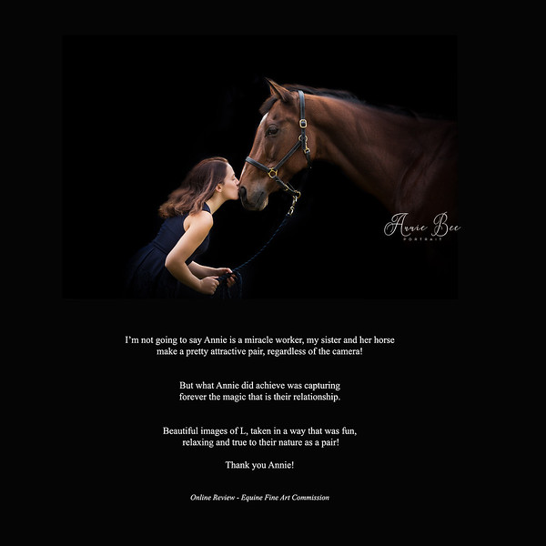 KIND WORDS - FINE ART EQUINE COMMISSION