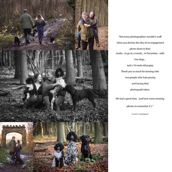 KIND WORDS. December Engagement Shoot - Badby Woods, Northamptonshire