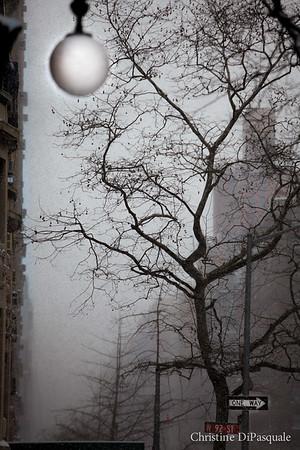street light riverside 2-