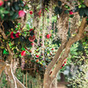 tree-spanish-moss-Hampton-park-charleston-sc-engagement-kate-timbers-photography-3125