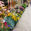 flower-market-paris-france-travel-destination-wedding-kate-timbers-photography-1745