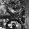 ring-wrought-iron-fence-downtown-charleston-sc-engagement-kate-timbers-photography-3553