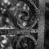 ring-wrought-iron-fence-downtown-charleston-sc-engagement-kate-timbers-photography-3551