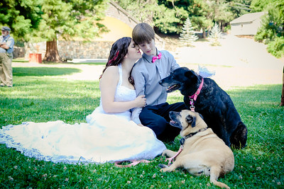 Wedding gone to the Dogs