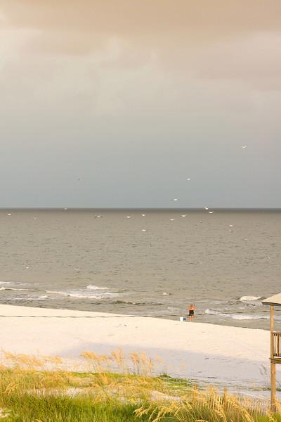 Gulf_shores_MG_8048