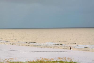 Gulf_shores_MG_8076