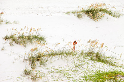 Gulf_shores_MG_7662