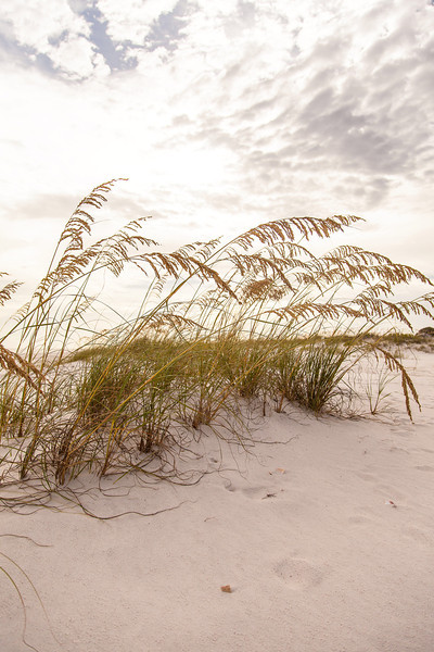 Gulf_shores_MG_7688