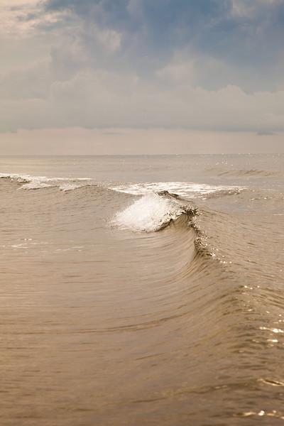 Gulf_shores_MG_8211