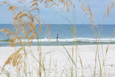 Gulf_shores_MG_8268
