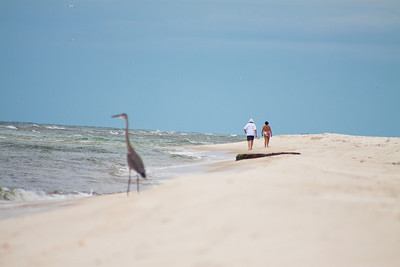 Gulf_shores_MG_8390