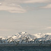 2011_Tahoe-125