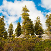 2011_Tahoe-260