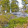 2011_Tahoe-258