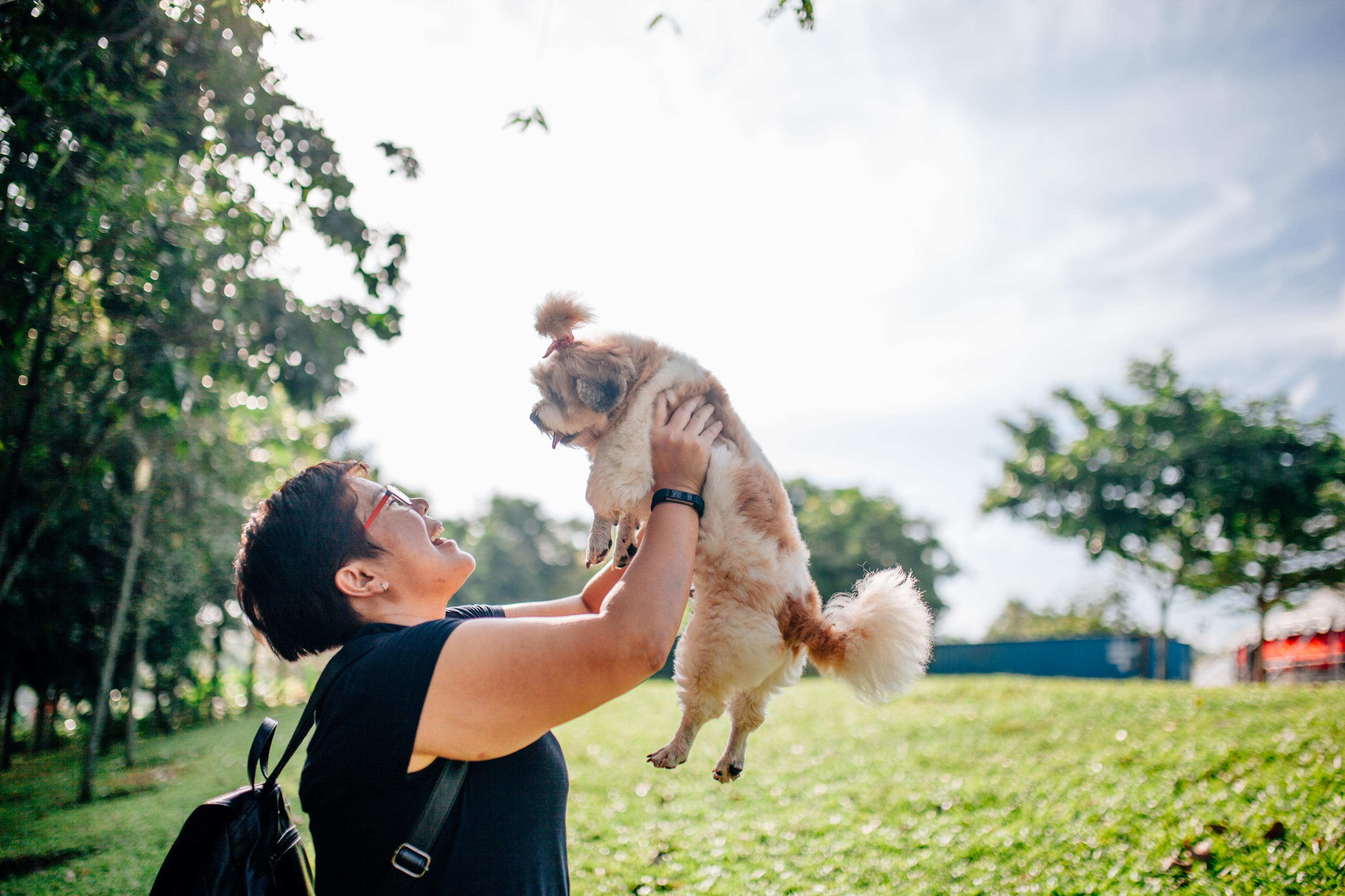 Animal Photography in Desa Park City, Kuala Lumpur