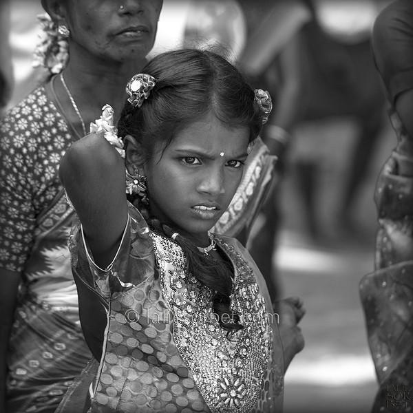 Girl at the indian festival of Pongal, celebrated in Tamil Nadu at the end of the harvest season.<br /> Jeune fille lors du festival indian de Pongal, célébré dans le Tamil Nadu lors de la fin des récolte.