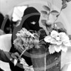An Arab women in Biet Hannon, Gaza Strip looks over her flower arrangement.