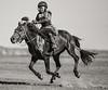 Nadam Racer, Mongolia